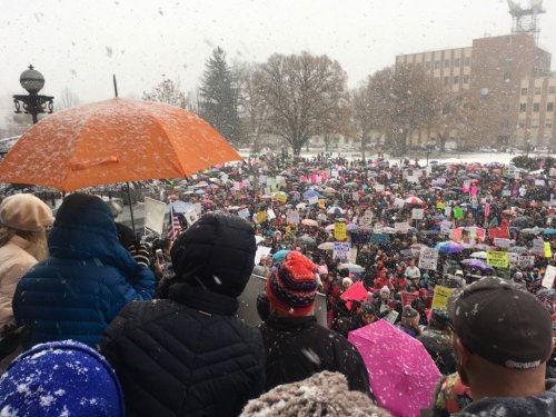 womens_march-01-21-17-13_boise